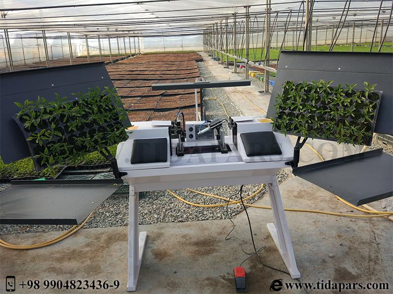 ربات پیوندزن نشا گلخانه تولید نشا پیوندی