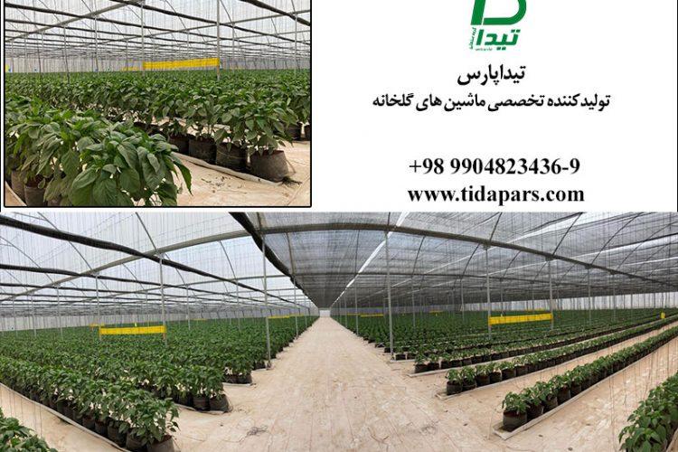 انواع گلخانه از نظر تولیدات پوشش سازه